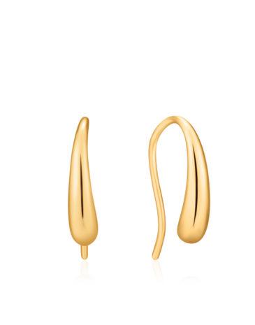 Luxe Hook Earrings